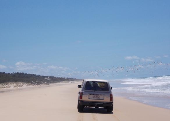 Fraser Island 4WDing