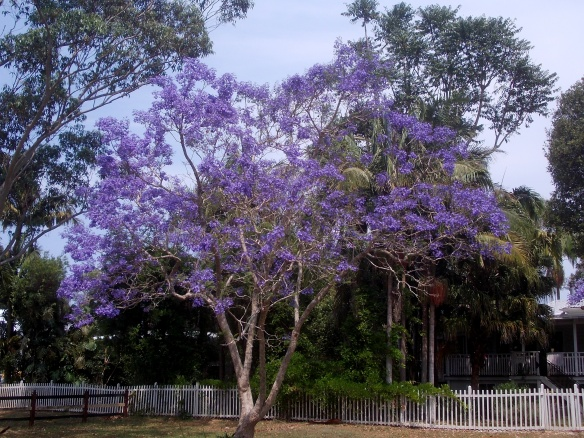 Byron Bay, Australia; October 2012