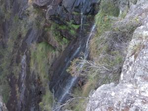 Trickle of Minyon Falls