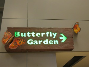 It was dark and all the butterflies were asleep, so no pictures of them.