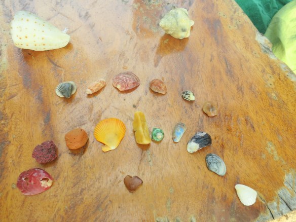 A rainbow, a conch, a heart-shaped piece of glass, and some of Seden's favorites besides