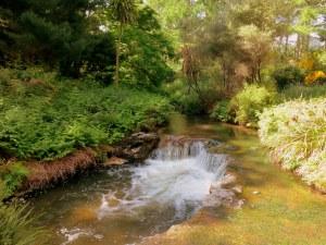 Kerosine Creek