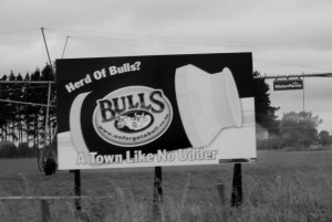 "The town of Bulls delivered pun after pun as we drove through it. I also liked the ""Afford-a-Bulls"" $2 shop."