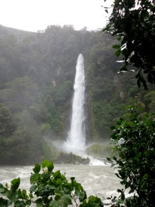 We stopped by Thunder Creek Falls on the road to Queenstown. The heavy rains made for a spectacular falls.