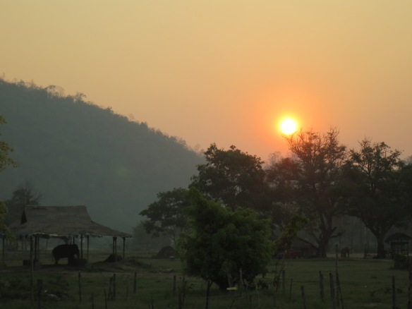 Sunrise, Elephant Nature Park, Thailand