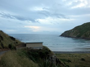 The viewing bunker at Roaring Bay