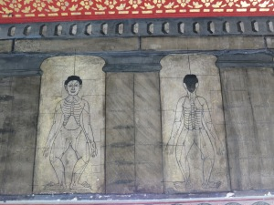 Medical diagrams at Wat Pho