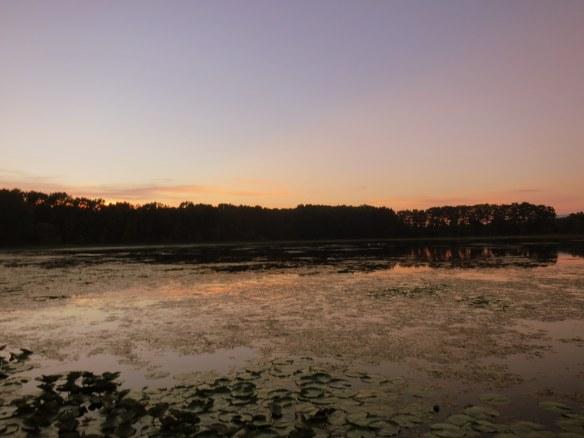 Sunset, Duck Lake, Michigan