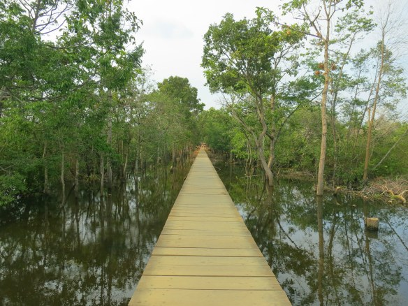 The long path to Neak Pean