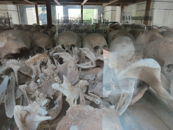 These skulls are shelved behind sliding doors of glass. Most skulls show some form of trauma.