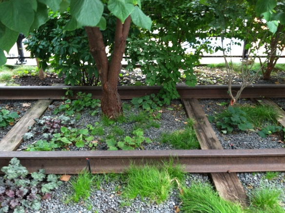 Plants in the train tracks