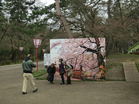 The park provided a couple of backgrounds like this, so you could take your picture with the sakura even if they weren't actually in bloom.