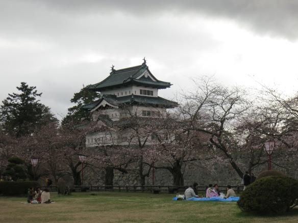 Celebrating hanami despite the gloomy weather