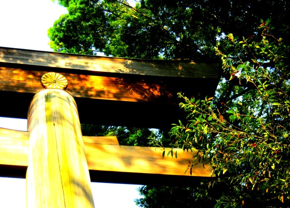 The edge of the torii