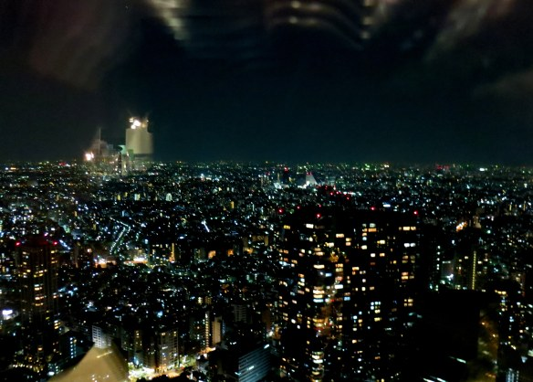 Tokyo from on high