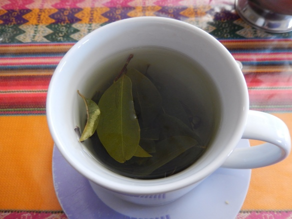 Coca tea--wake up!