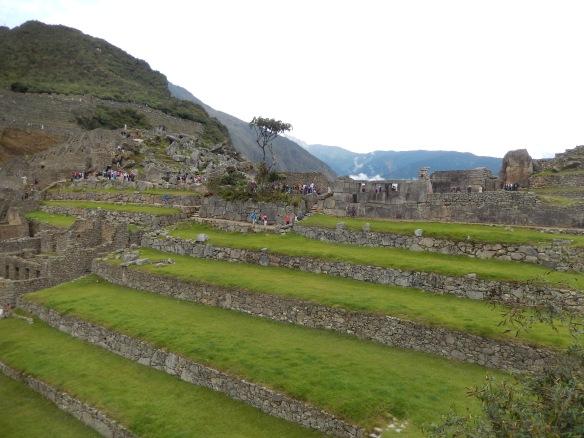 Terrace upon terrace
