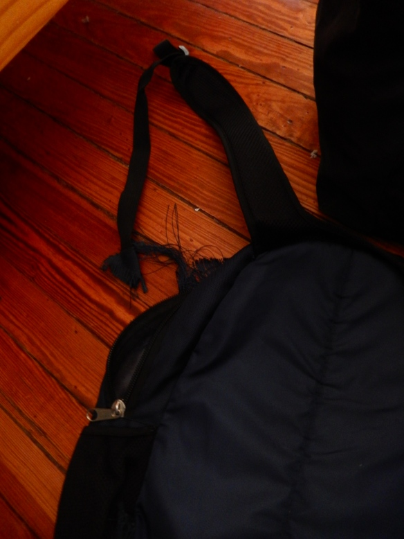 Literally the moment I boarded the bus to the Brazilian side of Iguazu Falls, the strap on this backpack broke