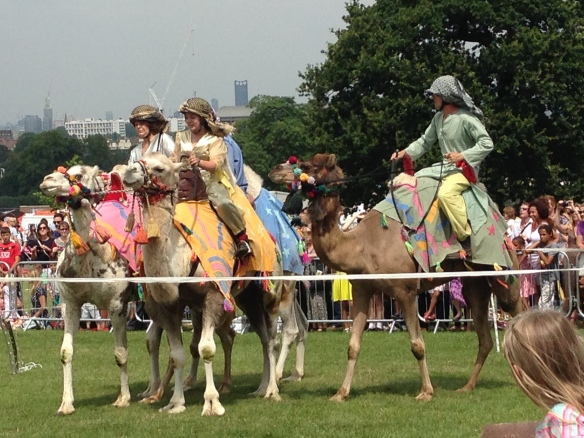 The race started when the four camels were more or less facing the same direction