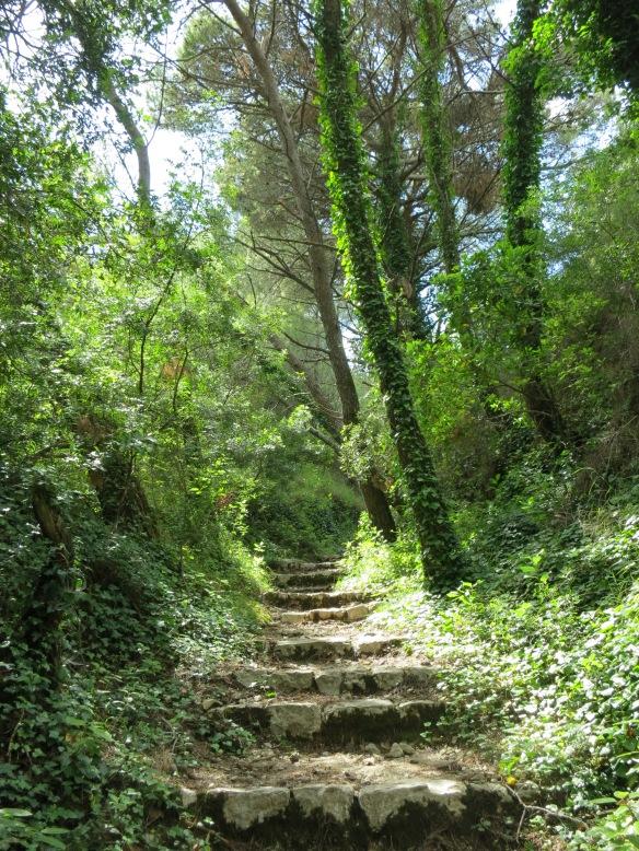 The walk across the island