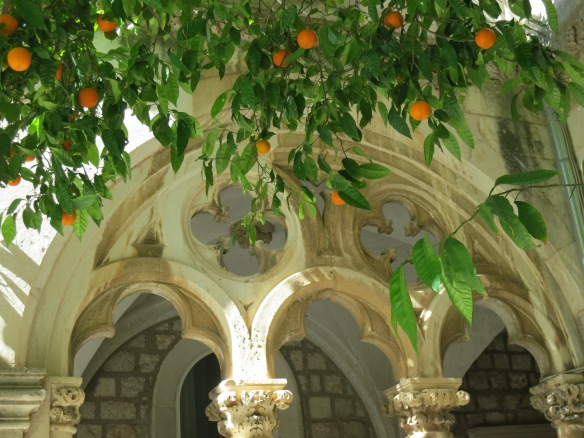 Orange trees in the courtyard