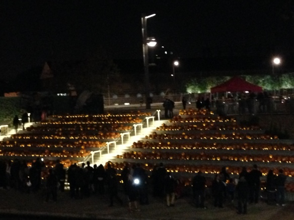 Just about shows the scope of the pumpkin display