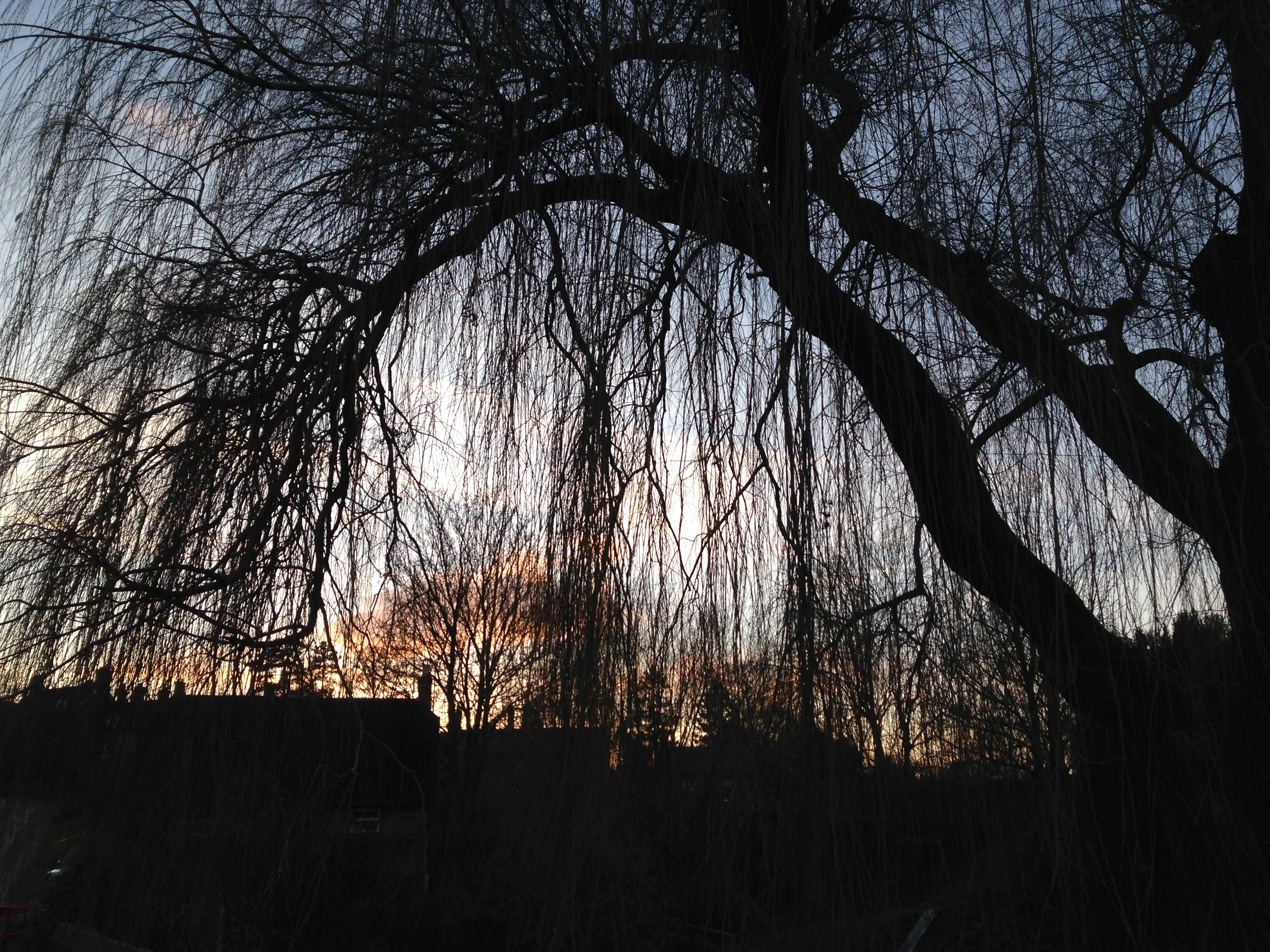 Sunset, Bloxham, England