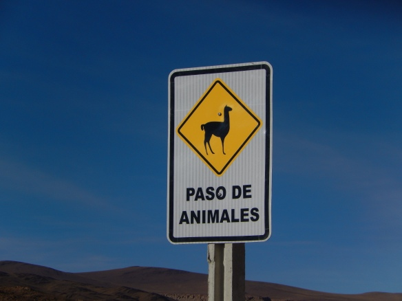 Llama crossing sign, Bolivia