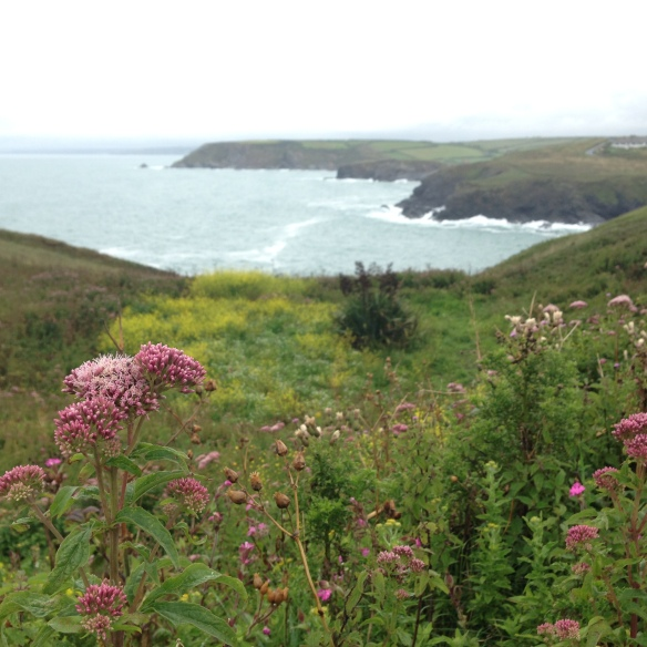 The Lizard Peninsula, Cornwall, England