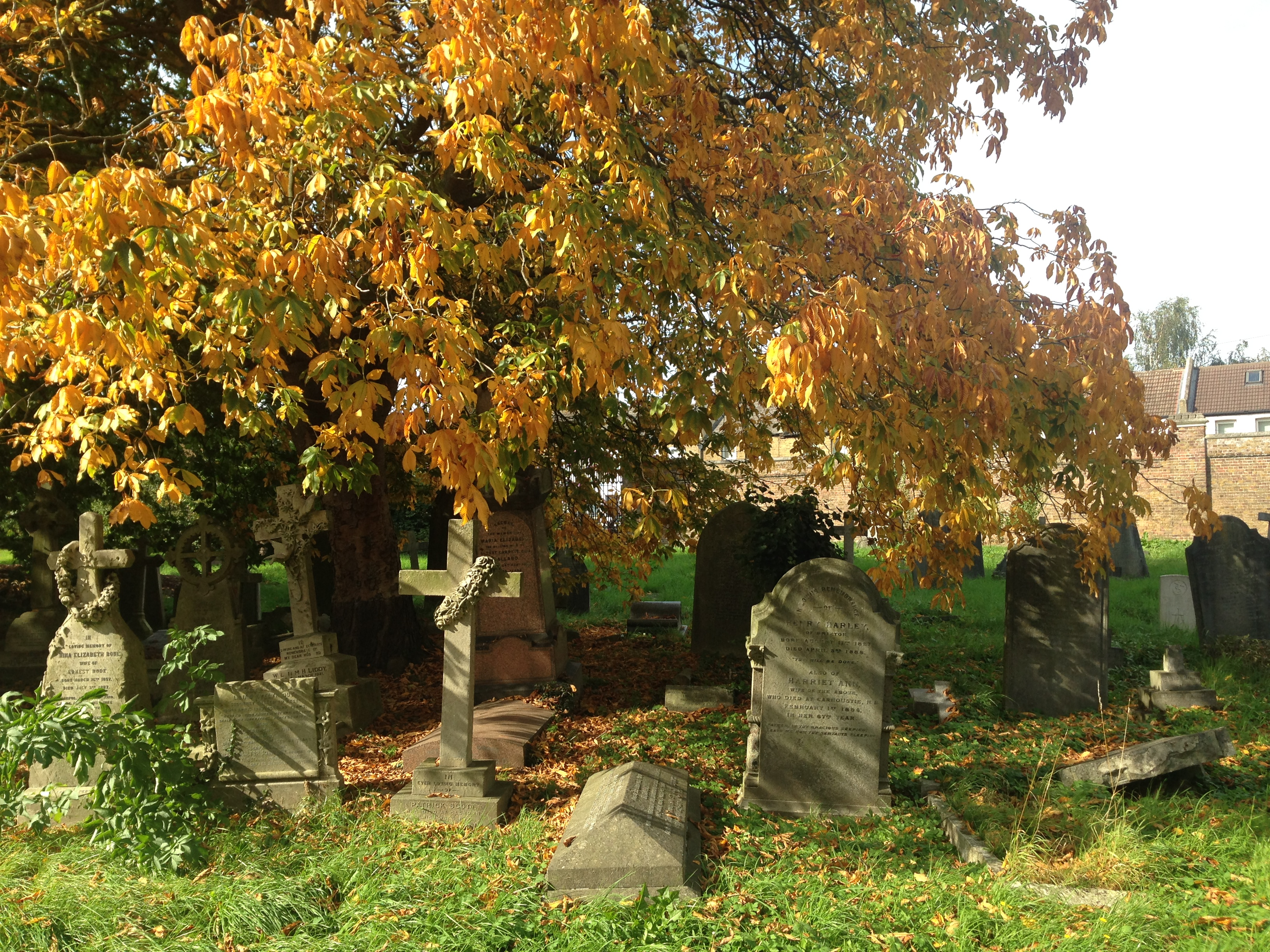 autumn london west norwood cemetery